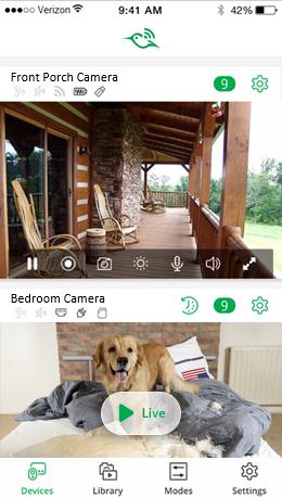 camera_feed_screenshot